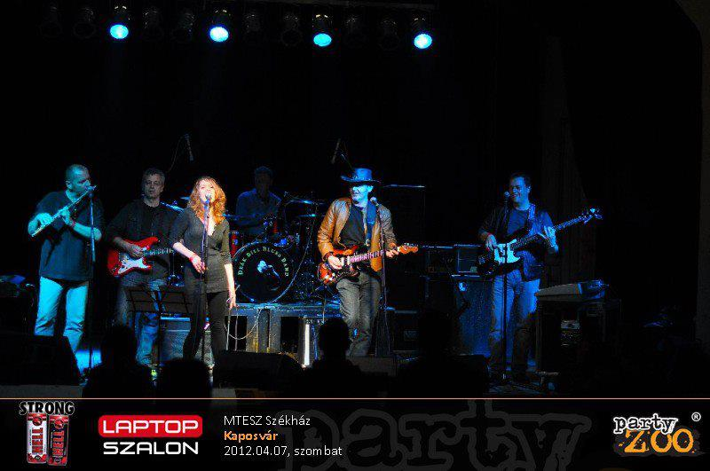 Bluesgarden koncert