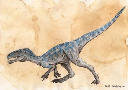 Knopflerszaurusz, azaz Masiakasaurus Knopfleri