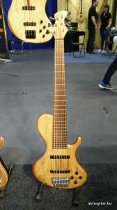 Blasius Guitars